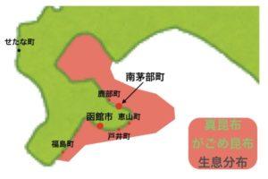 函館(南茅部)真昆布の産地・生息分布地図