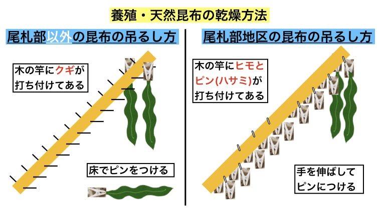 尾札部と他の地区の真昆布の干し方の違いについて